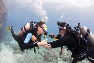PADI-Scuba-Diver-Course-Miami.jpg