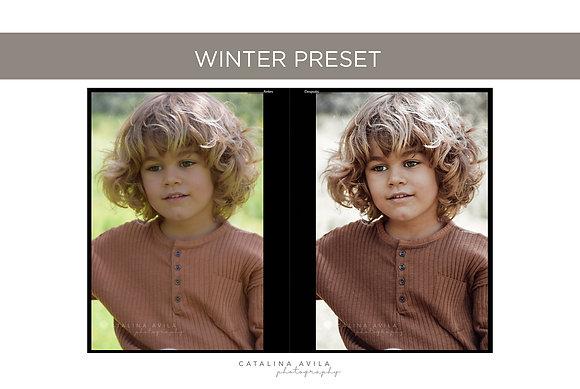 WINTER HOUSE - 5 PRESETS PARA JPG / versiones nuevas