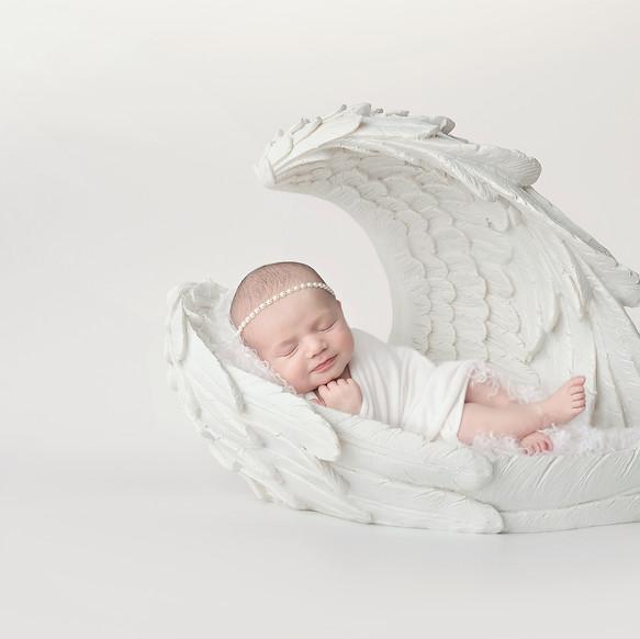 angelwings.sample.jpg