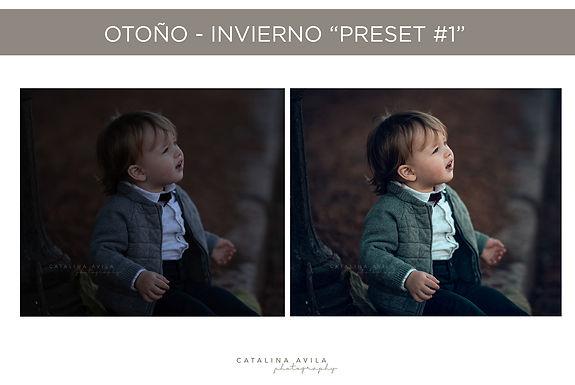 PROMO 80%OFF - 12 PRESETS - OTONO INVIERNO 2020. / 2 versiones