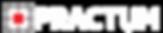 logo_practum_blanco.png
