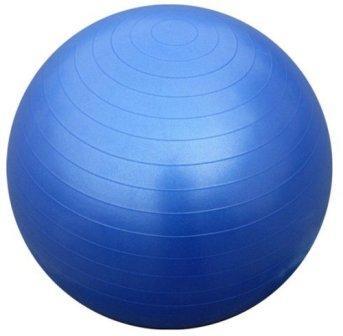 כדור פיזיו כחול