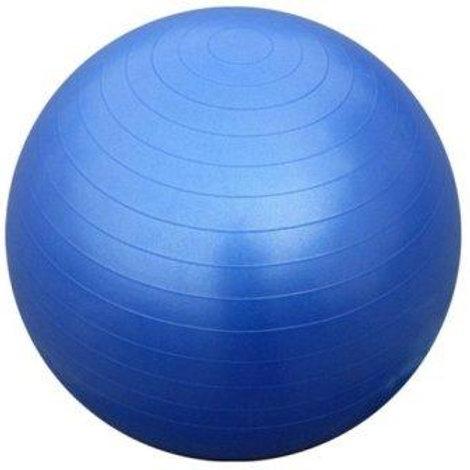 """כדור פיזיו 65 ס""""מ"""