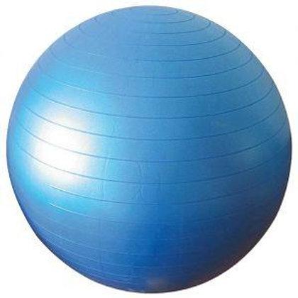 """כדור פיזיו 55 ס""""מ"""