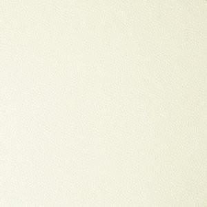 LEATHER+LIKE-white.jpg