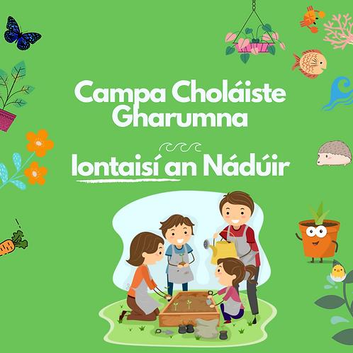 Campa Iontaisí an Nádúir