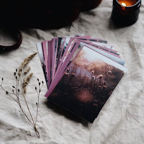 Pack of 30 Seasonal Postcards