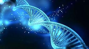 gene 3.jpg