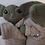 Thumbnail: Alien Pal