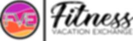 fve logo 1.jpg