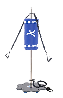 Fitness Pole With Boxing Apparatus