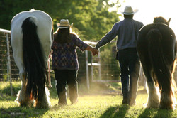 Couples Session with Horses