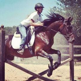 girl riding horse, jumping horse, horseback riding