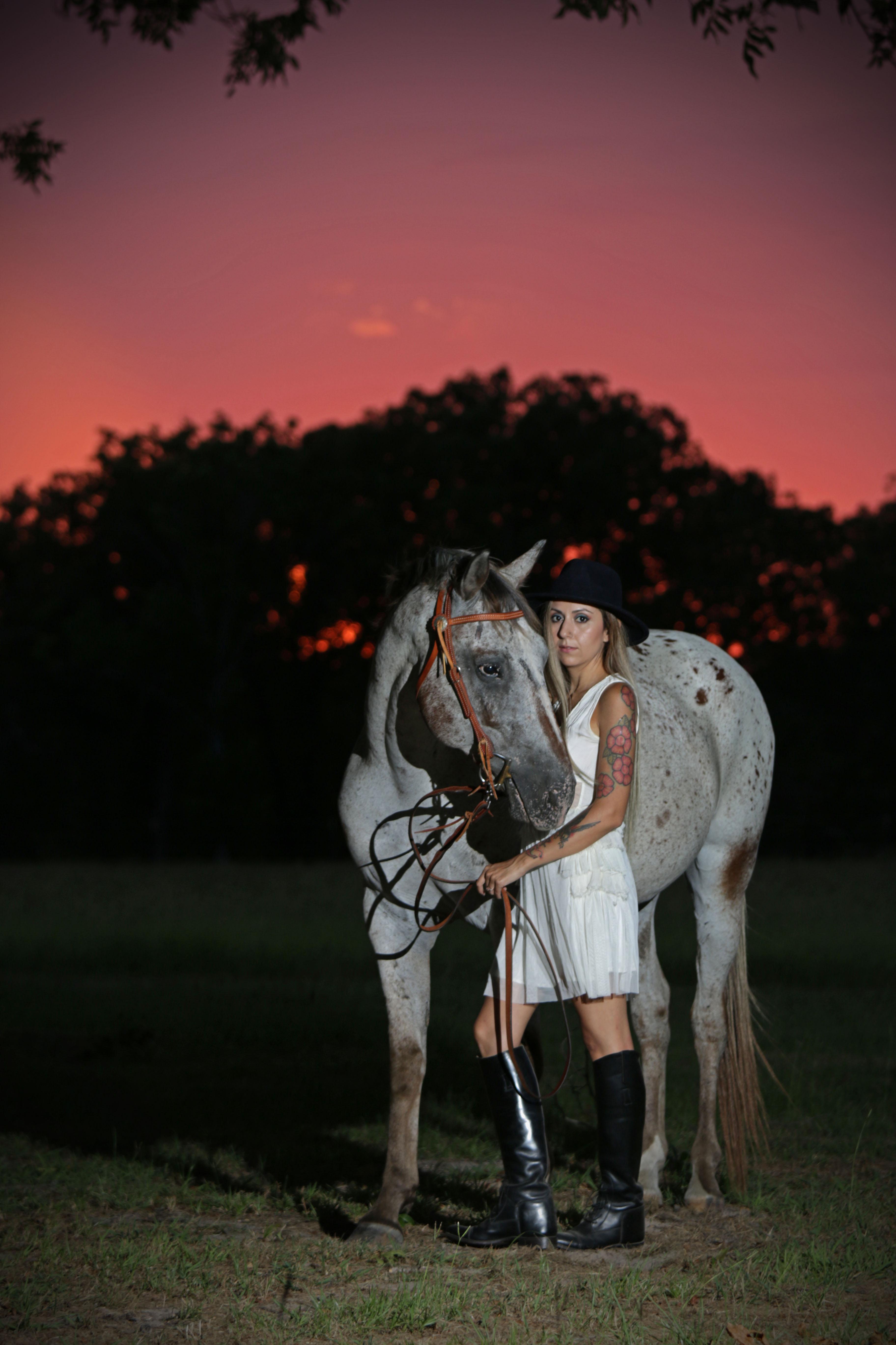 Horse & Rider Portrait Session