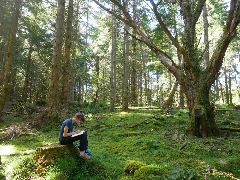 Emily is sitting on a tree stump writing in a notebook in the middle of a forest which has a green mossy floor.
