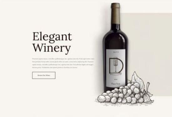 plantilla web vinacoteca