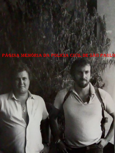 Investigadores Carlos Lang e Carlos Bertelli, entre 1986 e 1987, quando atuavam pela Divisão de Entorpecentes do DEIC, com um pé de maconha apreendido com mais de 3m de altura.  Acervo do Agente de Telecomunicações Eduardo Queiroz Corrêa.