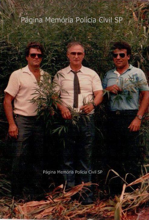 """Investigador de Polícia Waldemar """"Pisca"""", Delegado José Maria e Investigador Osvaldo Jose Dos Santos, quando localizaram plantação de maconha, na década de 80."""