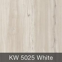 KW-5025-300x300.jpg