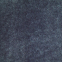 VENUS MEZCLILLA.jpg