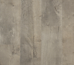 AUSTRIA OAK LIGHT GREY.png