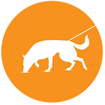 Dog Training San Marcos