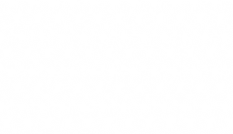 Dogs Pattern.png