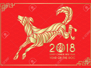 What Will the Year of the Earth Dog Bring?