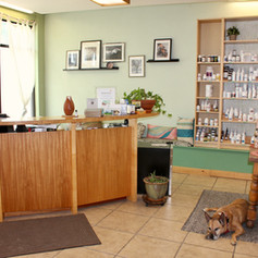 Denver Community Acupuncture