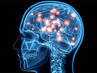Six Ways to Maximize Brain & Mood Health
