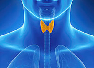 Five Ways Conventional Thyroid Testing Fails Millions