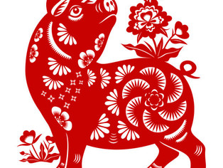 2019 Year of the Pig: What Will it Bring?