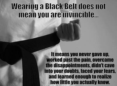 Inspiration to Karateka