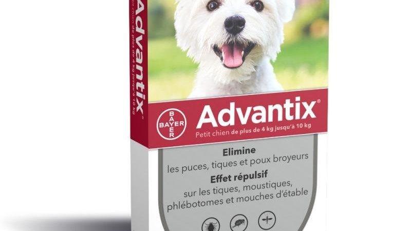 Advantix 4-10 Kg 4 pipettes