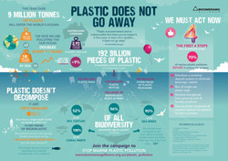 MicroPlastic-Infographic-Final-2016-1024x724