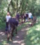 groupe_rando_ânes