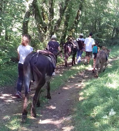 Balade guidée ânes©Les Echappées Vertes