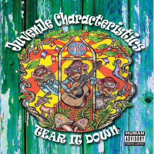 Tear It Down CD