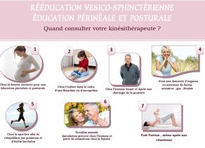 La rééducation vésico-sphinctérienne &     l'éducation pelvi-périnéale et posturale