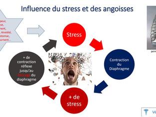 Bon à savoir sur le grand muscle diaphragme et le stress …