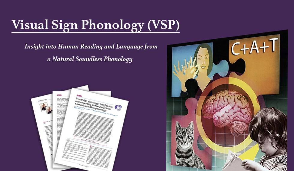 Visual Sign Phonology