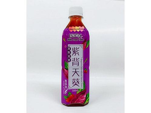 鴻福堂紫背天葵(500mlx24支)
