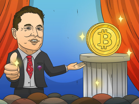 Elon Musk's influence on the future of Bitcoin