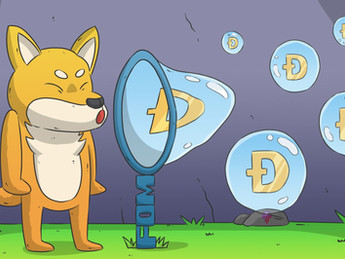 THE FATE OF THE DOGECOIN BUBBLE