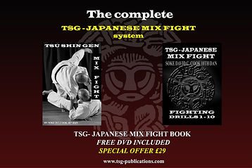 TSG-MIX FIGHT ADVERT REDUCTION.jpg
