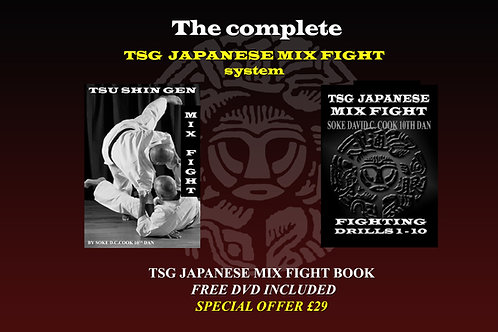 TSG JAPANESE MIX FIGHT