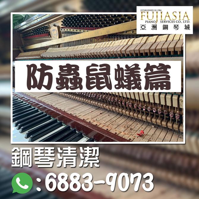 【鋼琴保養系列✨防蟲鼠蟻篇】