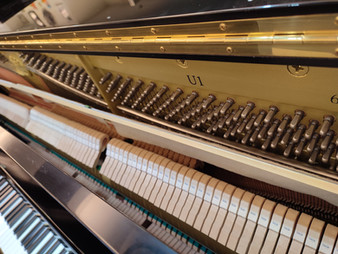 【考級鋼琴】Yamaha U1  多款新款 (25/5/2021)