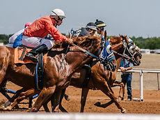 men-on-horses-3015224_edited_edited.jpg