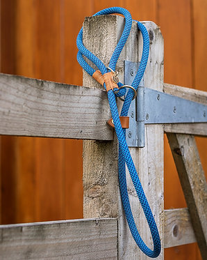 Slip Rope Dog Lead